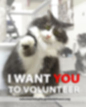 I want you_edited-1.jpeg