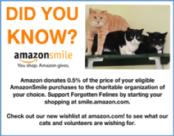 AMAZON-SMILE-HOME-PAGE-AD.png