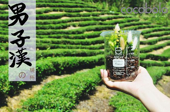 男子漢の燒杯│療癒系綠色植栽小品