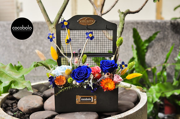 Royal Blue Garden │復古工藝盒恆星花禮