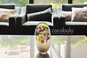 cocobolo flower original design│Shining Tears  獻給遠方的思念  立體斜口玻璃恆星花禮