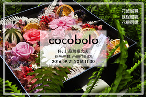 cocobolo @ 新光三越 台南中山店 💡 首次品牌概念店登場