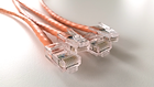 CAT5 Cable Assembly