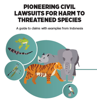 Pioneering civil lawsuits for harm to threatened species