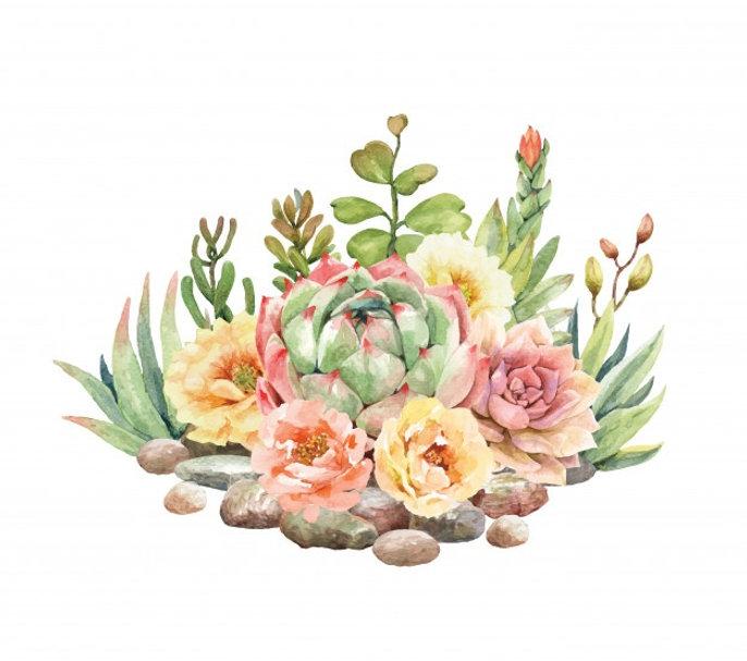 watercolor-cactus-succulent-are-surround