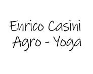 Enrico Casini.jpg
