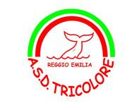 tricolore.jpg