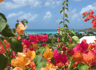 Besuch in Antigua