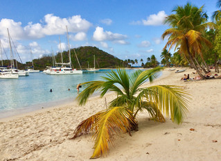 Von Bequia zur Marina Phare Bleu - Grenada