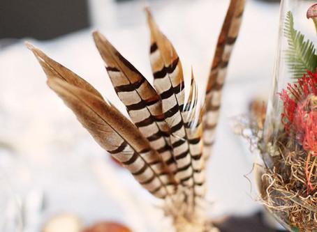 Hablemos de decorar con plumas, sí, plumas