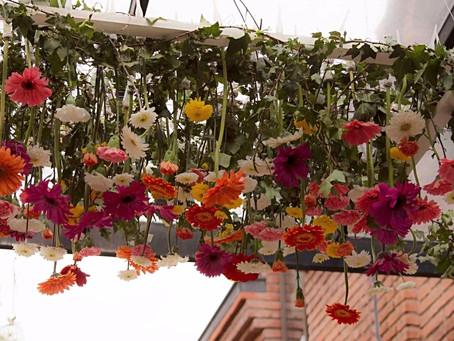 BlowColor Flores: Inspiración desde tendencias europeas