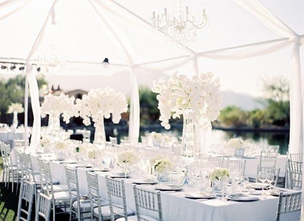 all white boda