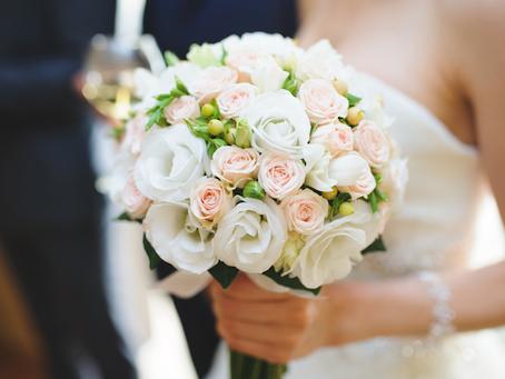 Las flores perfectas de Camila Gysling