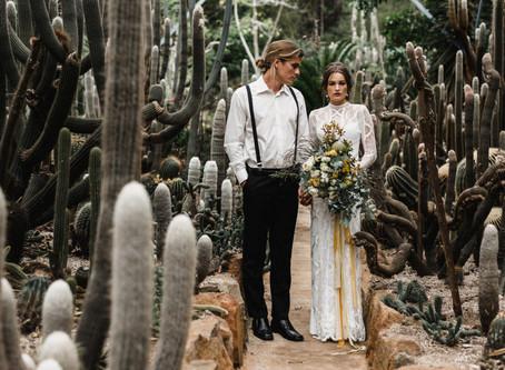 Los cactus nunca fueron así de románticos