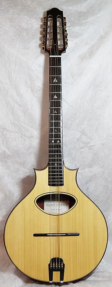 Cittern Top_cr.jpg