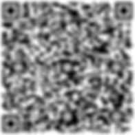 QR Code Kontaktdaten Meier + Schultz GbR
