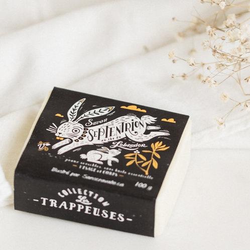 SAVONNERIE DES DILIGENCES - Cocoa Butter + Labrador Tea Soap