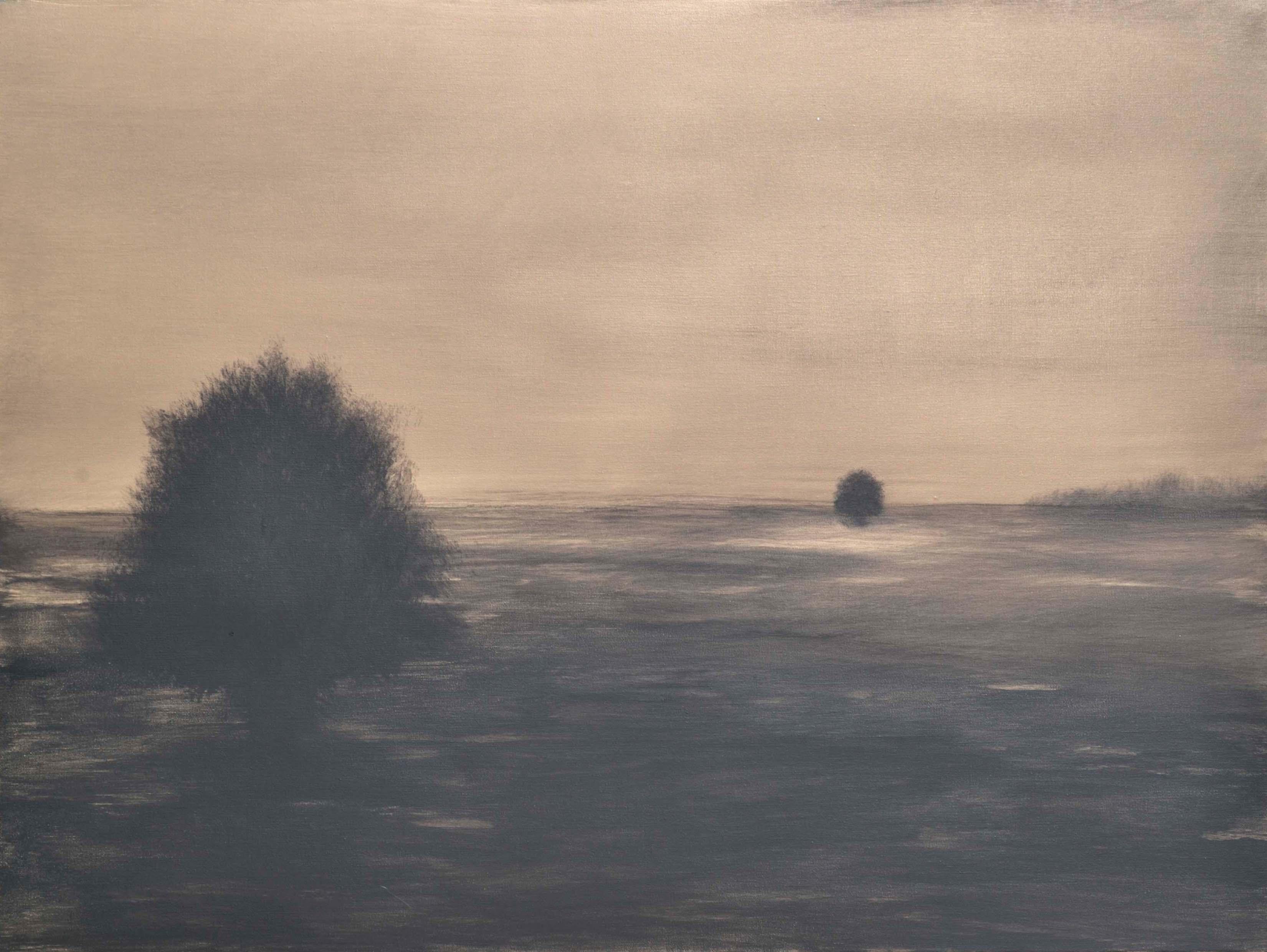 Mystic Landscapes 008