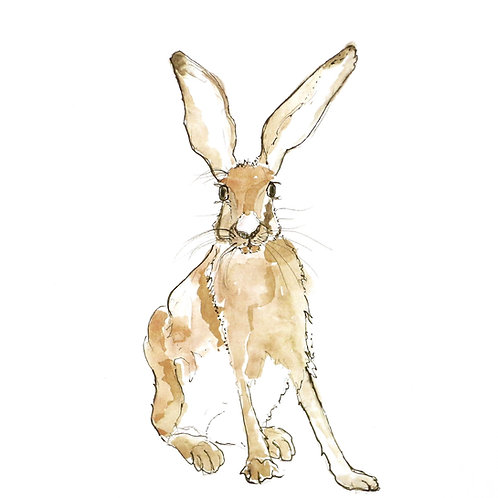 Hare in the Sweater - Harry Hare Card