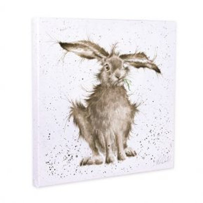 Wrendale Hare Brained Canvas 50x50cm