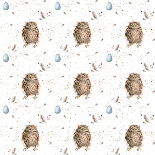 Treetop Feathers Gift Wrap