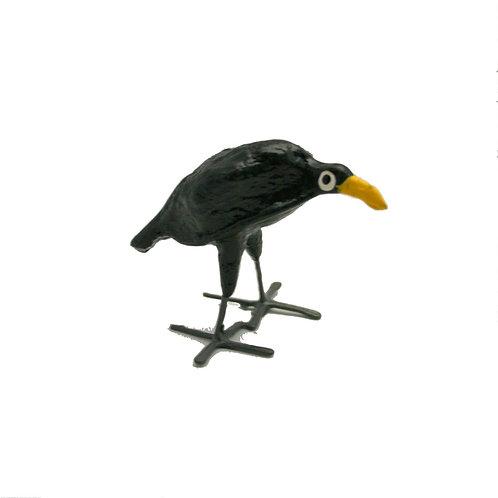 Seedpod Blackbird