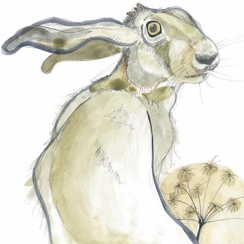 Hare in the Sweater - Hector Hare Card