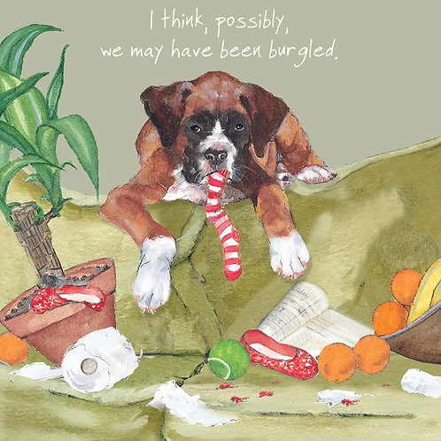 I think, possibly, we may have been burgled... Little Dog Laughed Card