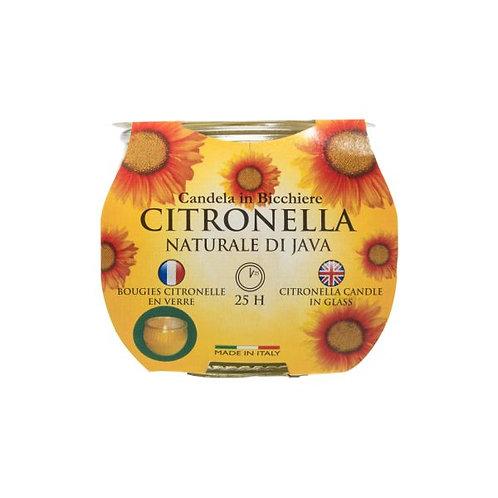 Citronella Jar