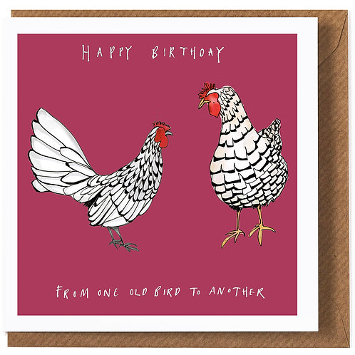 Katie Cardew One old Bird Card