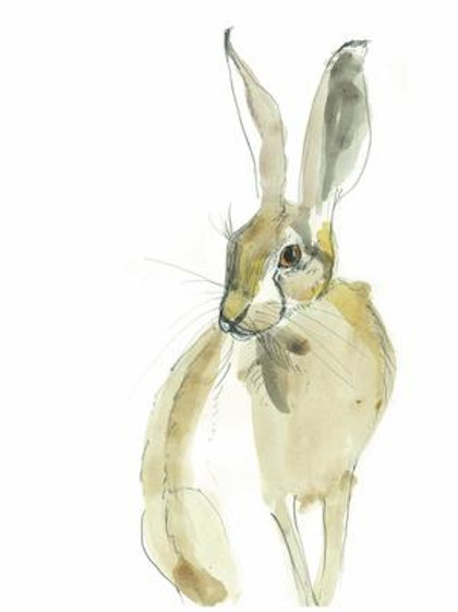 Hare in the Sweater - Hermione Hare Card