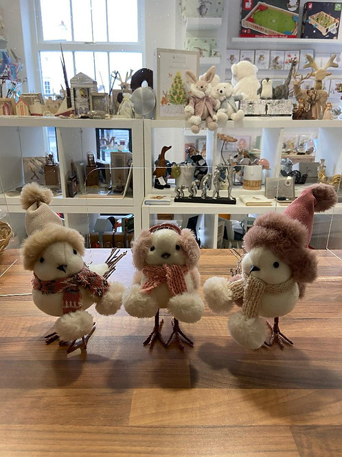 Winter Birds in Outfits