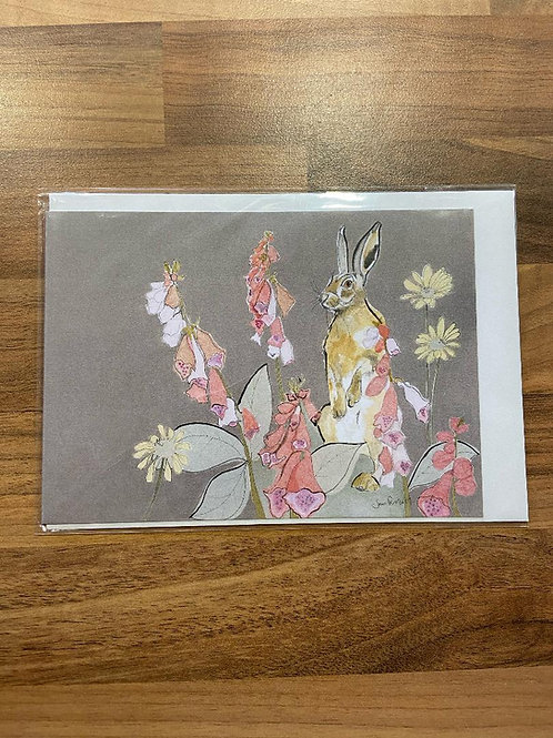 Hare in the Sweater Card