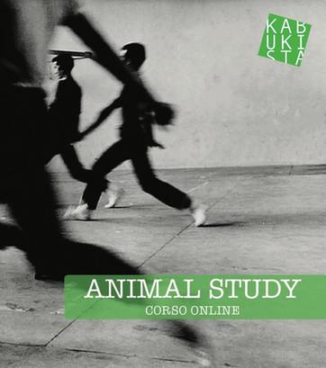 Animal Study. Dal 19 e 20 aprile seminario sul movimento degli animali.