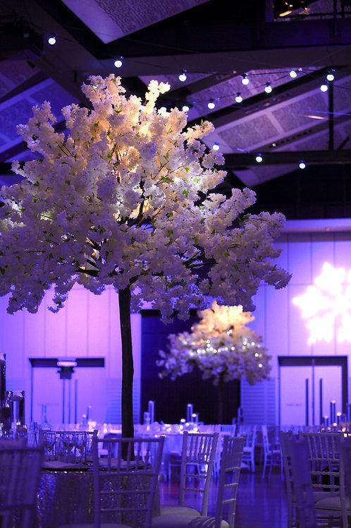 White Blossom Trees