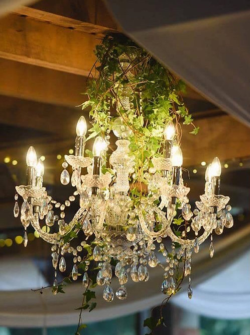12 Arm Crystal Chandelier