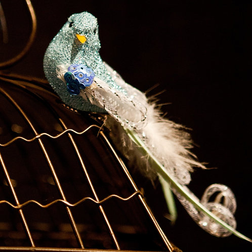 Assorted Decorative Birds