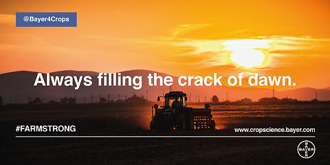 Bayer #farmstrong small7.jpg