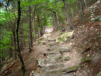 Standing Stone Trail 1000 Steps
