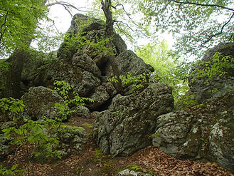 Standing Stone Trail Rocky Ridge Natural Area