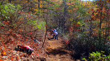 Trail Crew Works Diligently on Hoopers Gap Reroute