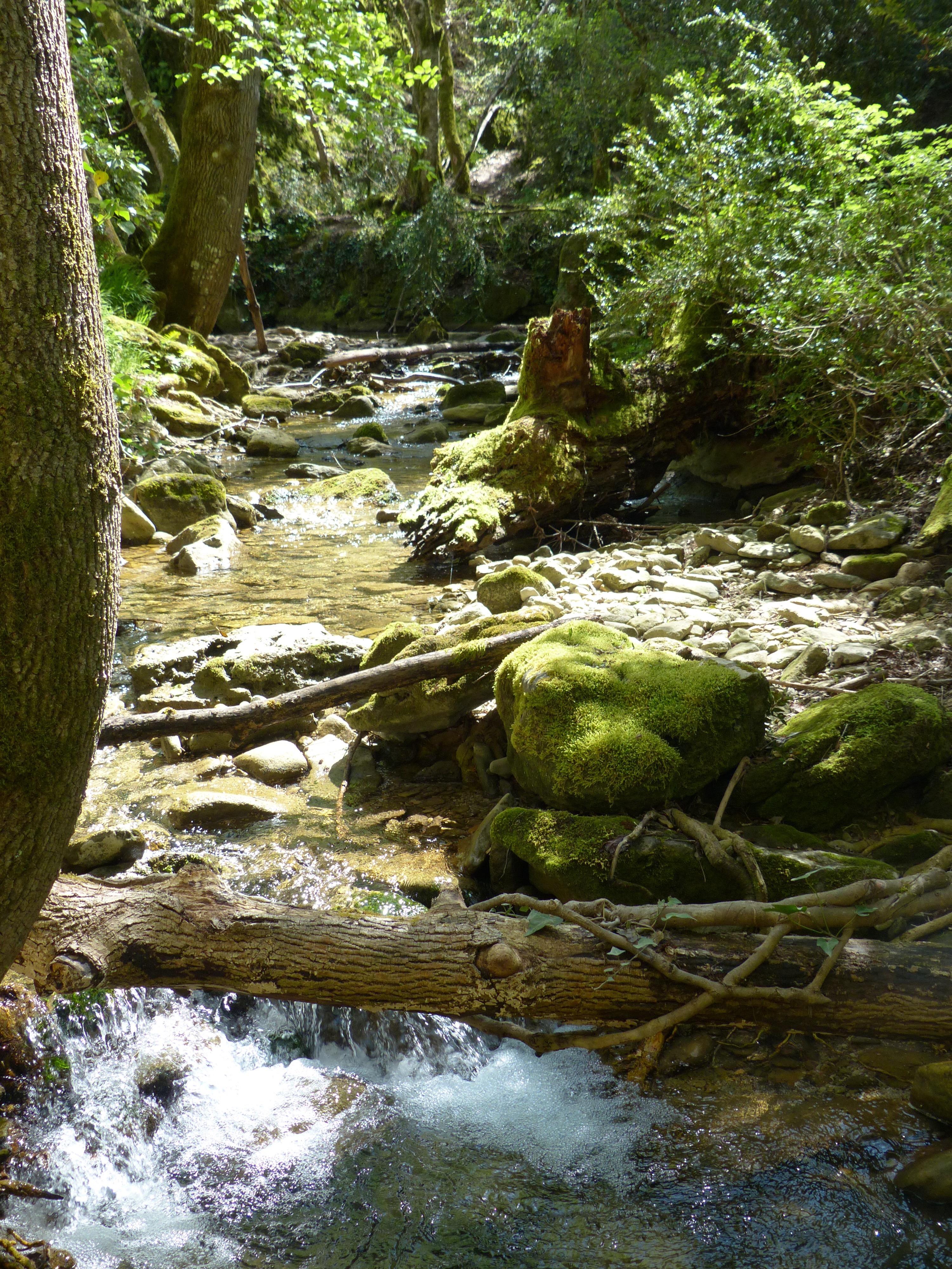 le ruisseau de l'Aiguebrun