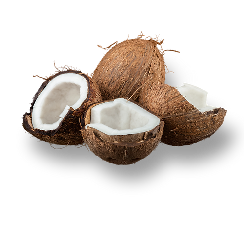 coconut cut out.png