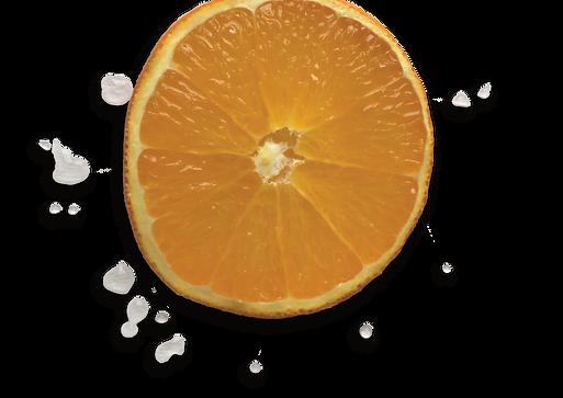 orange slice.png