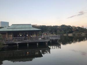 November Event 2018: Momijigari