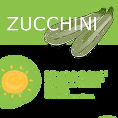 zucchini%20face%20A_edited.png