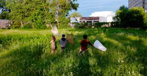 Permaculture et Biodiversité