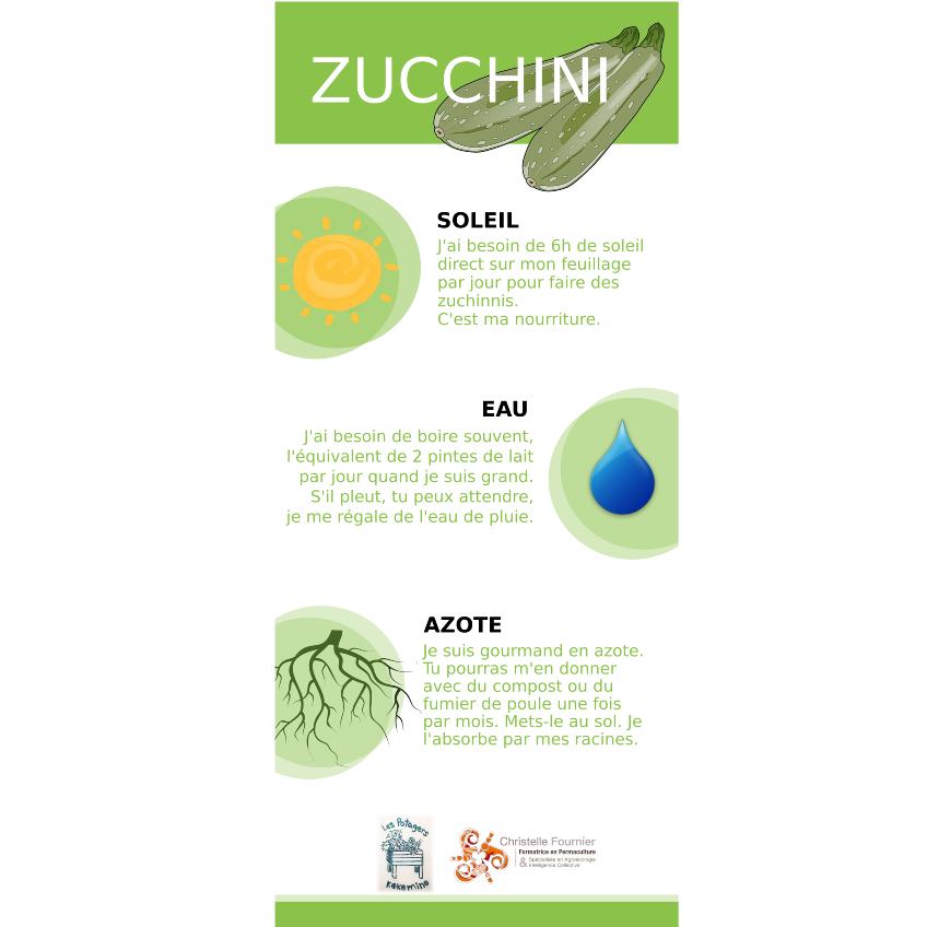 Zucchini face A.png