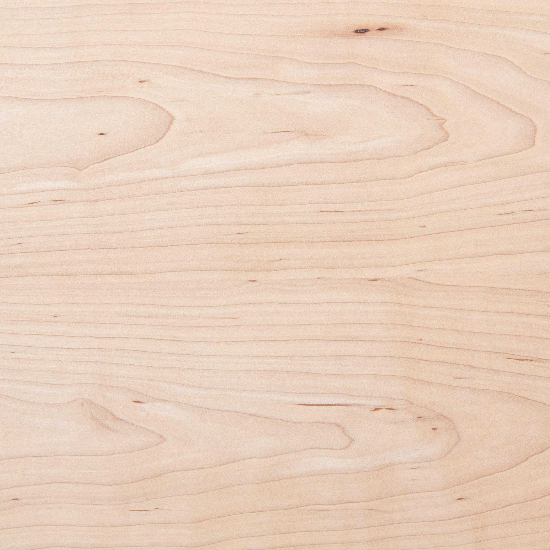 楓木 Maple