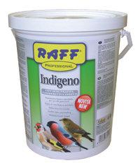 Raff - Indígeno 2kg